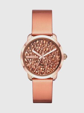 DZ5583, Pink - Timeframes